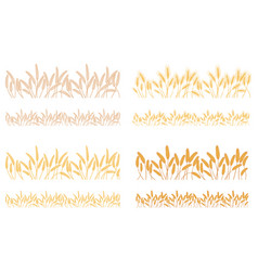 strips waving ears of cereals plants vector image