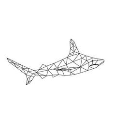 polygon shark vector image