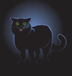 black cat on black background vector image vector image