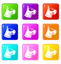 Bull terrier dog icons 9 set vector