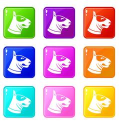 Bull terrier dog icons 9 set vector