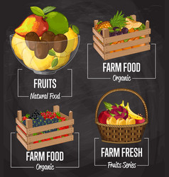 Organic farm fruit concept set vector