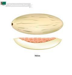 Ripe melon a popular fruit in turkmenistan vector