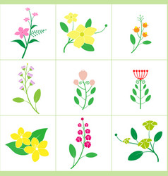 set of cute flower vector image vector image