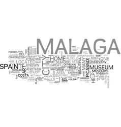 What to do in malaga spain text word cloud concept vector
