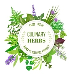 Culinary herbs round emblem vector image