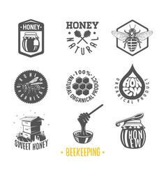 beekeeping vector image vector image