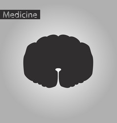 Black and white style icon of spinal cord vector