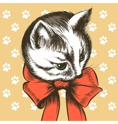 Kitten with Red Bow vector image vector image
