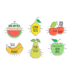 Flat style minimal trendy citrus and fruit bubble vector