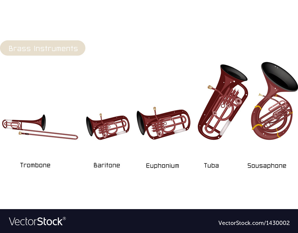 Five musical brass instrument vector