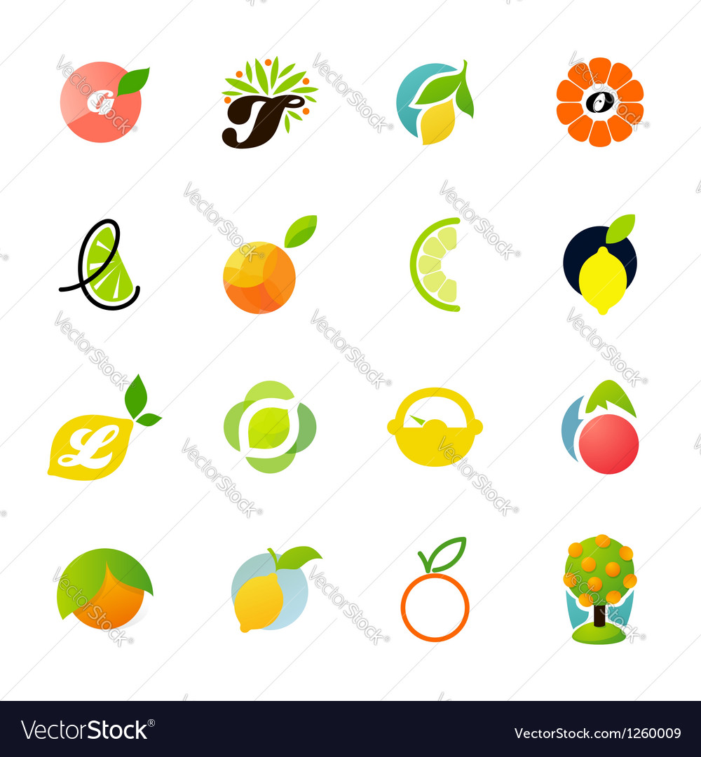 Citrus family  logo templates set vector