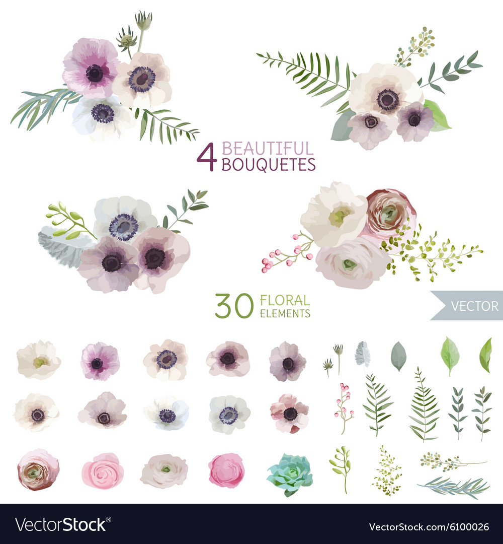Flowers and leaves  in watercolor style vector