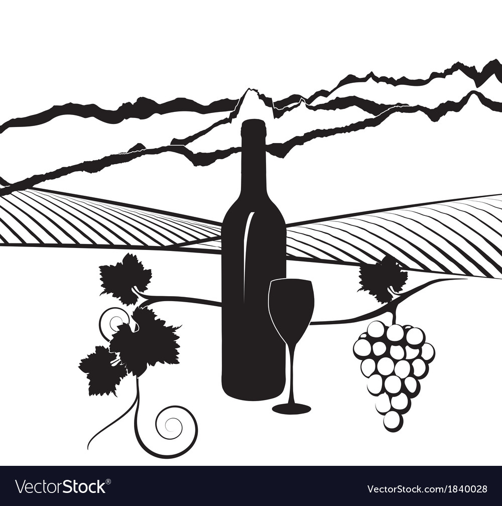 California vineyard vector