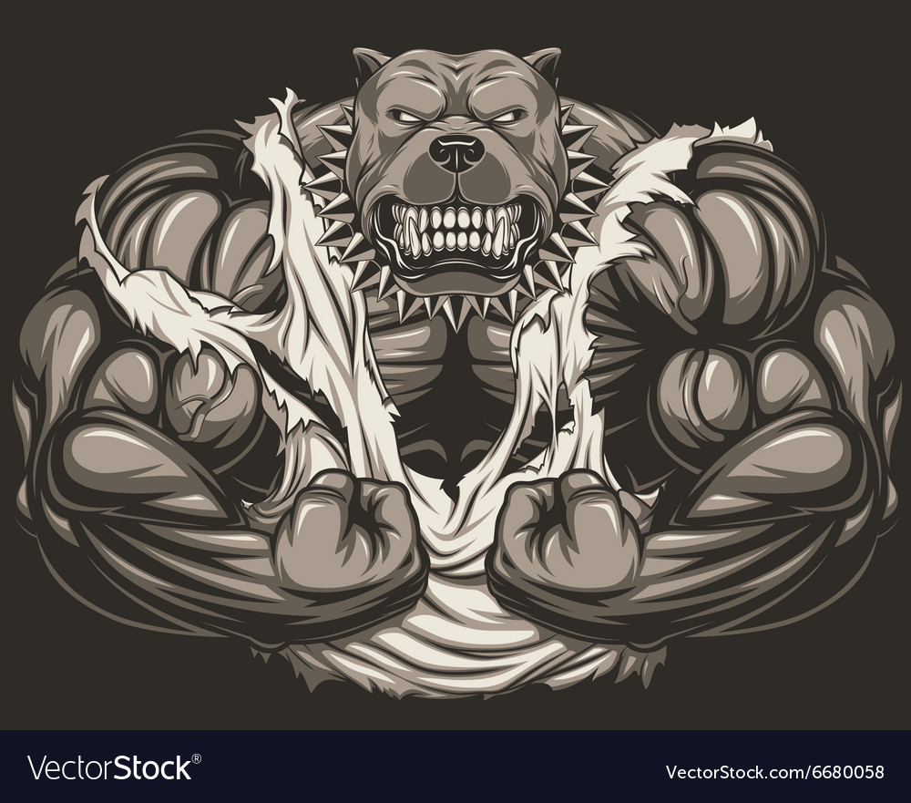Angry dog bodybuilder vector