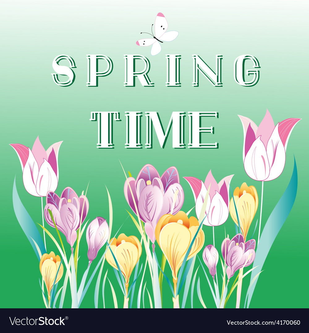 Spring background with snowdrops vector