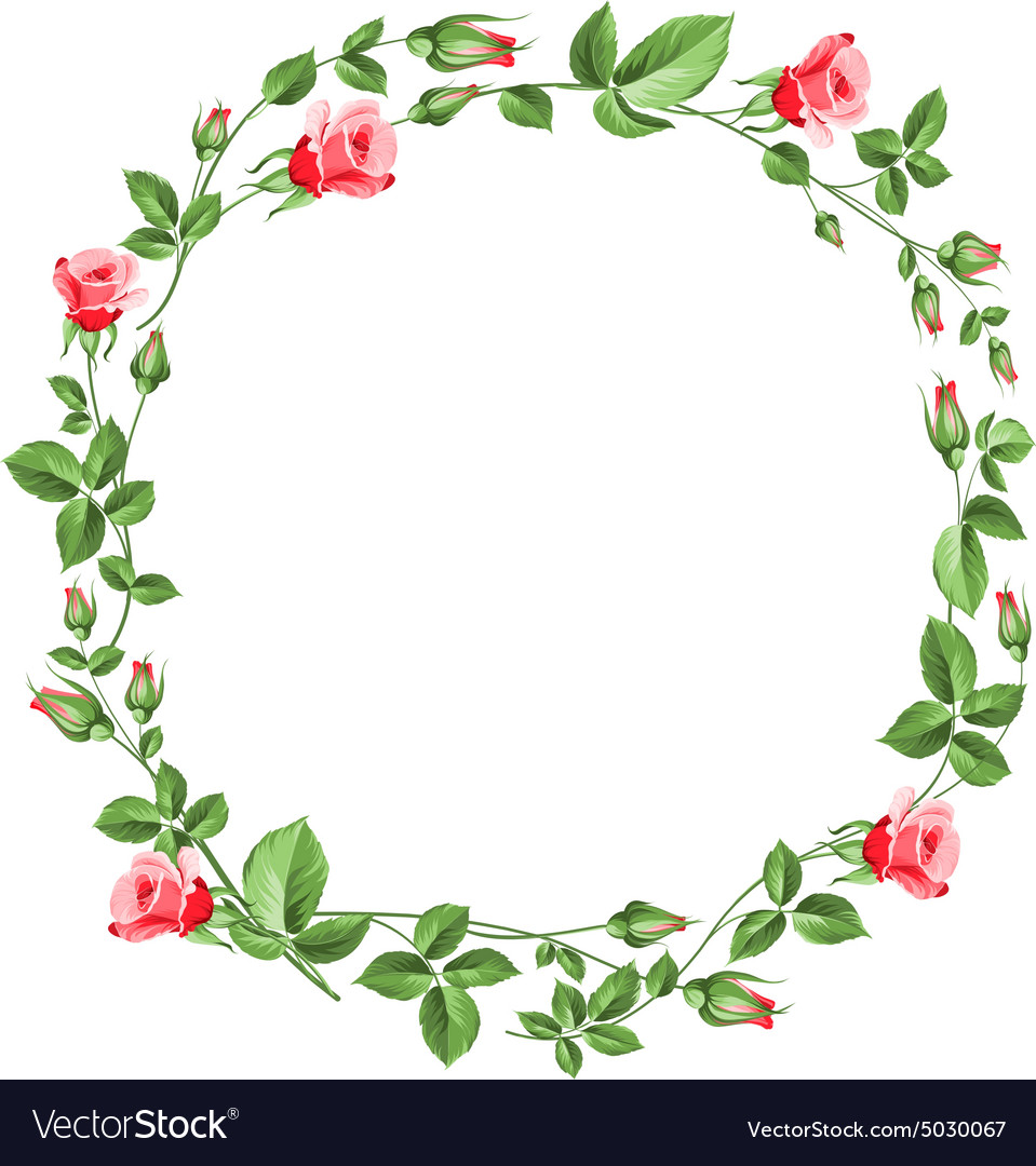 Rose wreath isolated on white vector