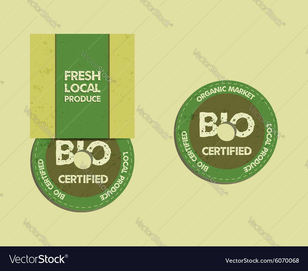 Stylish farm fresh cd and dvd disc templates with vector