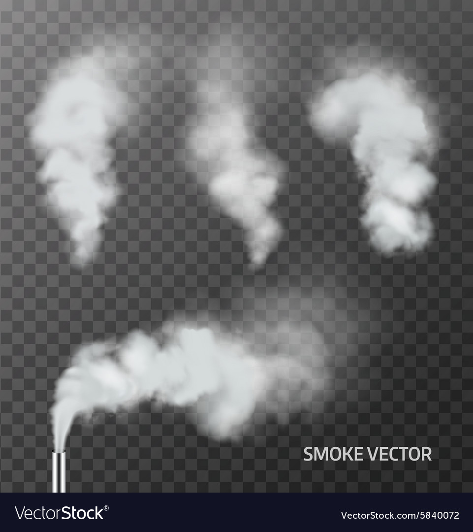 Realistic smoke steam on transparent background vector