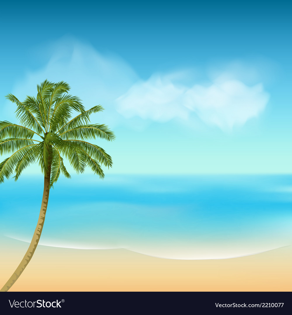Summer sea and palm tree background vector
