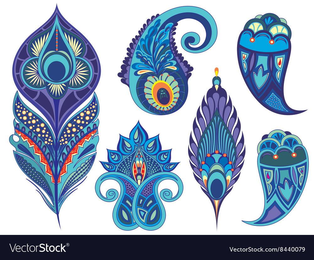 Collection of peacock elements vector