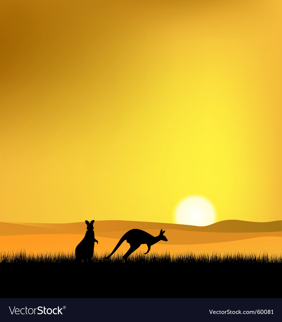Sunset in australia vector