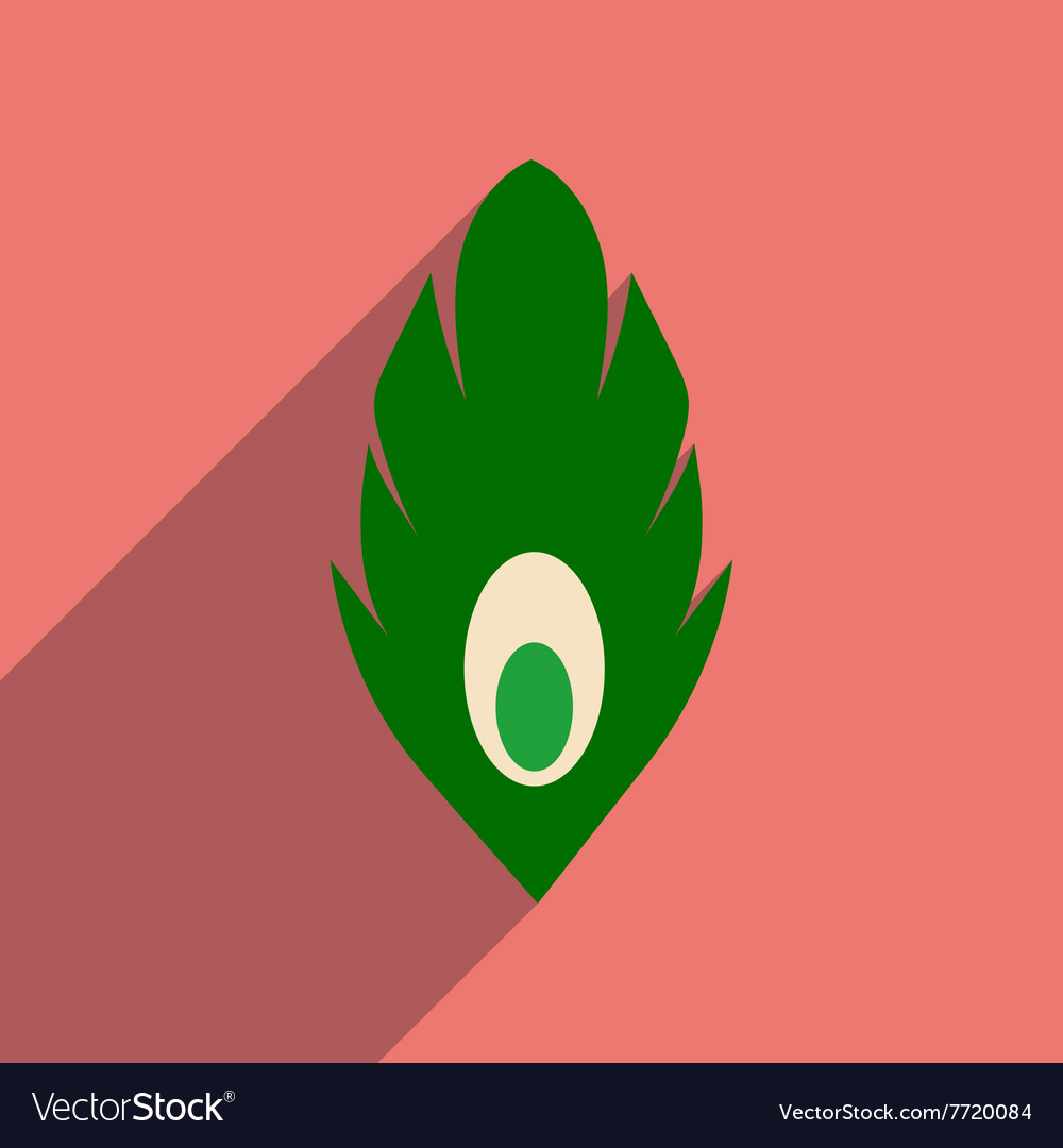 Flat web icon with long shadow peacock feather vector