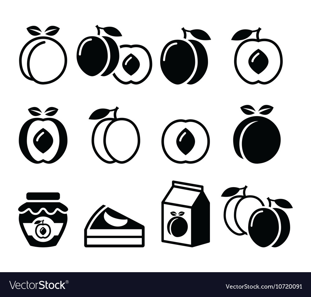 Peach apricot fruit icons set vector