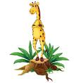 A giraffe standing above a stump vector image vector image