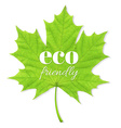 Green Leaf Eco Friendly vector image vector image
