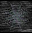abstract cobweb on dark background vector image