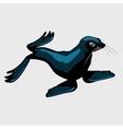 Cute sea lion single isolated icon vector image