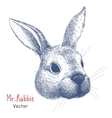 portrait of a rabbit vector image