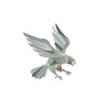 Peregrine Falcon Swooping Grey Low Polygon vector image