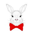 cute bunny portrait Hand drawn rabbit head with vector image