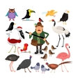 Fowling Birds and Hunter vector image vector image