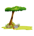 A gray cat under a tree with a hole vector image