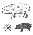 American US cuts of pork vector image