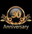 30 years anniversary birthday in gold vector image