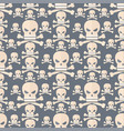 skull face character scary holiday design ghost vector image