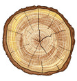 Wood Log vector image