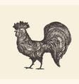 drawn rooster vintage sketch vector image