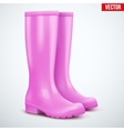 Pair of female pink rain boots vector image