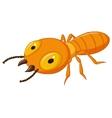 Termite cartoon vector image