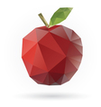 apple low poly vector image vector image
