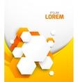 Abstract orange brochure with hexagons vector image