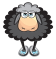 Cute black sheep vector image