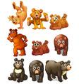 Cute bear movements vector image vector image