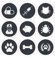 Veterinary pets icons Paw syringe and bone vector image