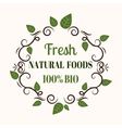 Natural eco organic product label badge vector image